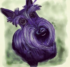 scottie-dog