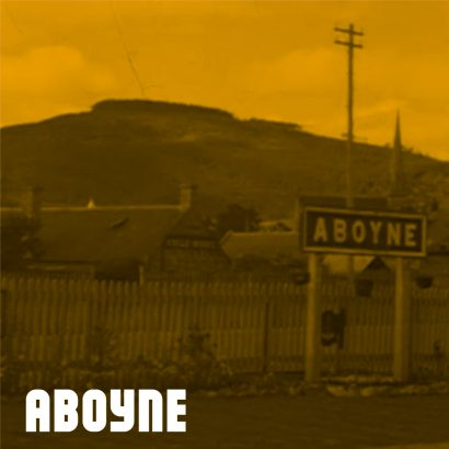 aboyne-yellow-410x410
